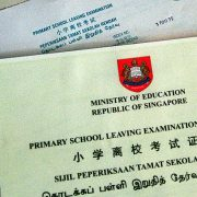 handle psle results