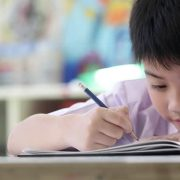 Primary Comprehension Tips: Knowing The 8 Question Types